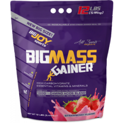 Bigjoy Bigmass Gainer Poşet 5440 Gr