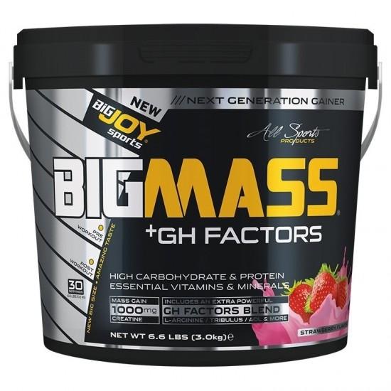 Bigjoy Bigmass GH Factor Gainer 3000 Gr