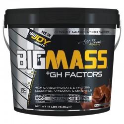 Bigjoy Bigmass Gh Factor Gainer 5000 Gr