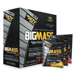 Bigjoy Bigmass Gh Factors Go Mix Aroma 50 Şase